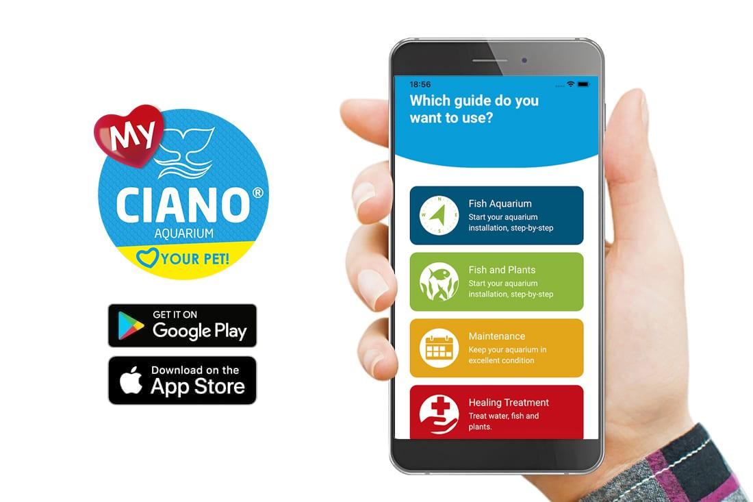App My CIANO